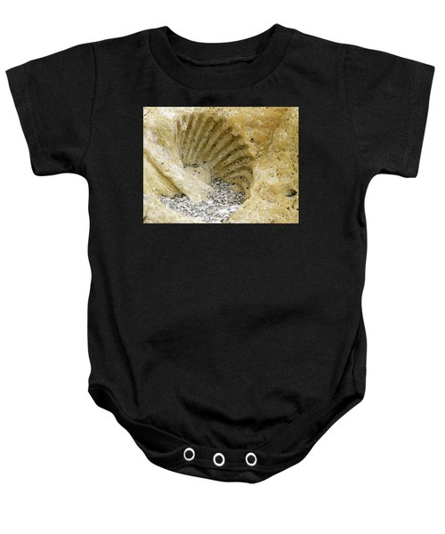 The Shell Fossil Baby Onesie
