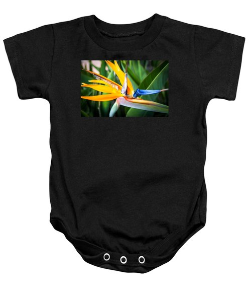 Tropical Closeup Baby Onesie