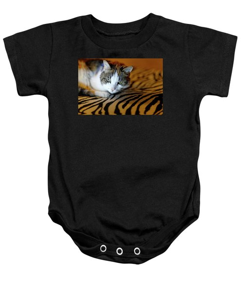 Zebra Cat Baby Onesie