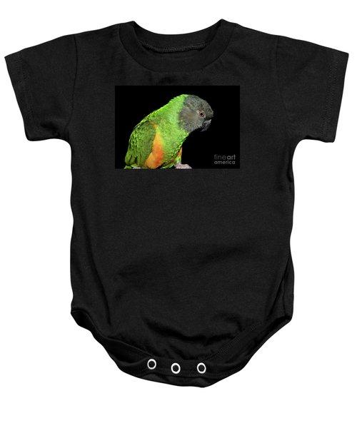 Senegal Parrot Baby Onesie