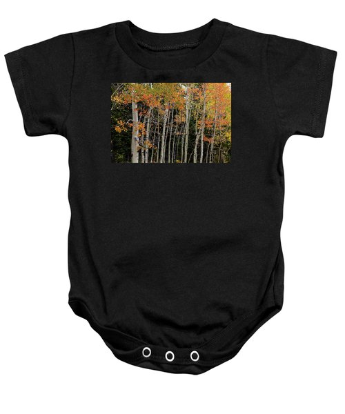 Baby Onesie featuring the photograph Autumn As The Seasons Change by James BO Insogna
