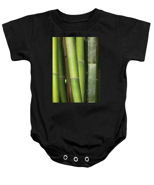 Bamboo Stalk 4057 Baby Onesie