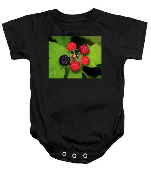 Blackberries Baby Onesie