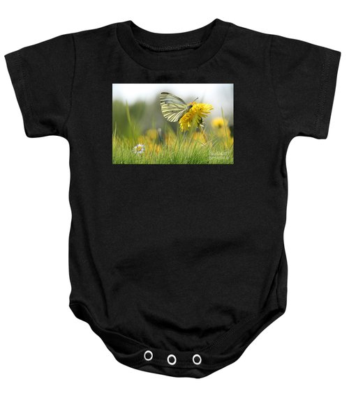Baby Onesie featuring the pyrography Butterfly On Dandelion by Morag Bates