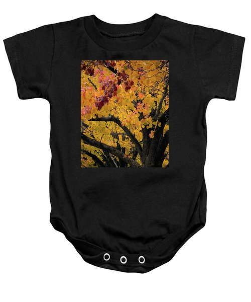 Fall In Carlyle Baby Onesie
