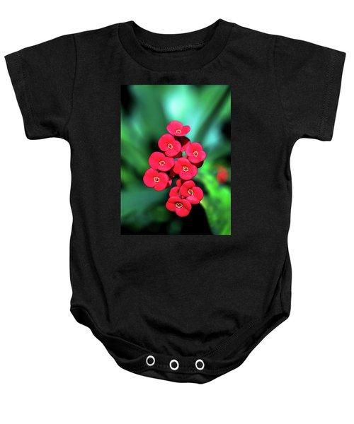 Flower Parade Baby Onesie
