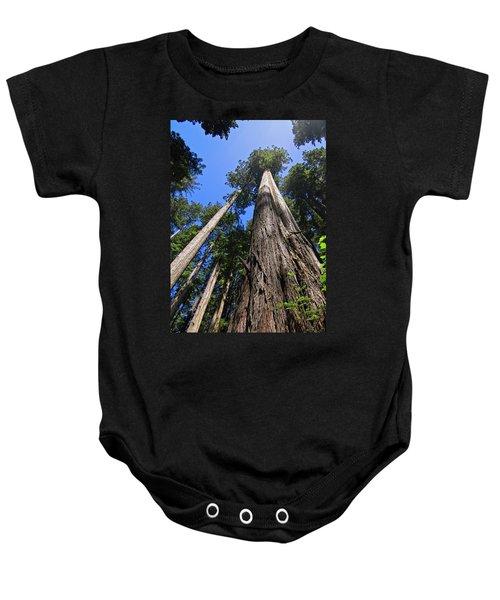 Towering Redwoods Baby Onesie