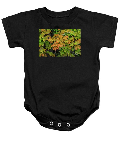 Various Stages Of Fall Color On Maple Leaves Baby Onesie