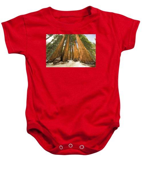 Giant Sequoias Sequoia N P Baby Onesie