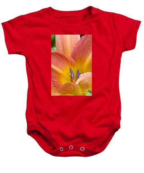 Day Lily  3 Baby Onesie