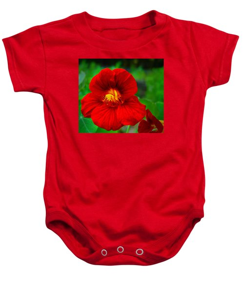 Day Lily Baby Onesie by Bill Barber