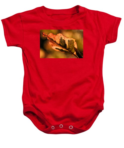 Tri-color Beech In Autumn Baby Onesie