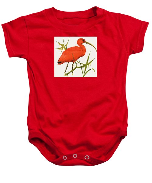 A Scarlet Ibis From South America Baby Onesie by Kenneth Lilly