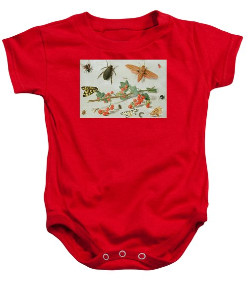A Sprig Of Redcurrants With An Elephant Hawk Moth, A Magpie Moth And Other Insects, 1657 Baby Onesie