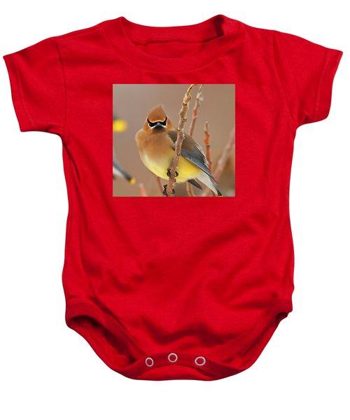 Cedar Wax Wing Baby Onesie by Carl Shaw