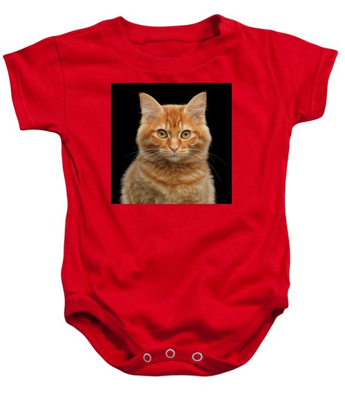 Close-up Portrait Of Ginger Kitty On Black Baby Onesie