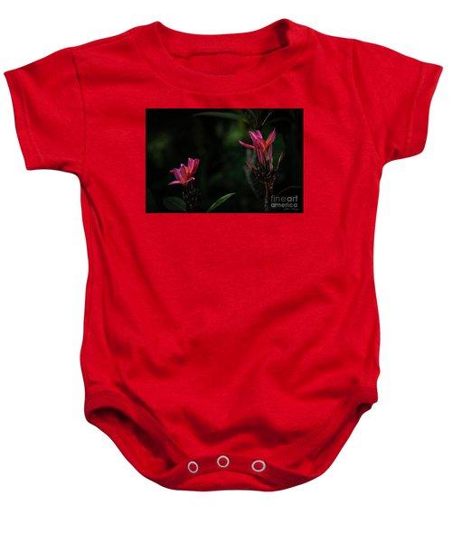 Dual Red Plumerias Baby Onesie