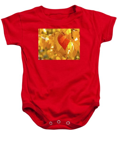 Fall Color Baby Onesie