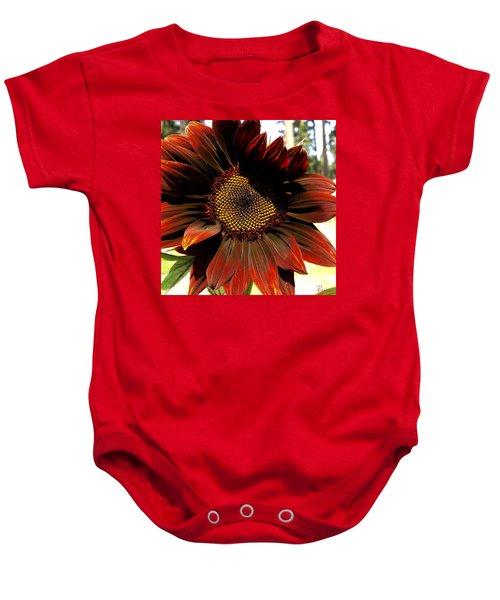 Fibonacci Hues Baby Onesie