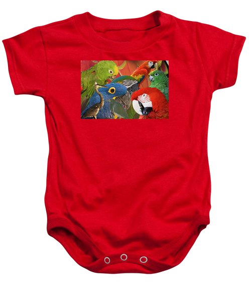 Florida Birds Baby Onesie