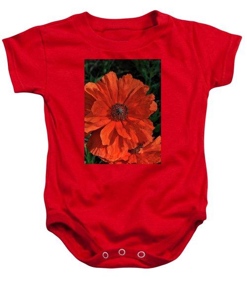 Giant Mountain Poppy Baby Onesie