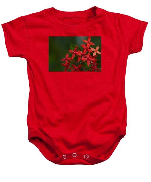 Jungle Geranium Baby Onesie