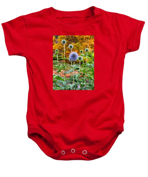 Late Bloom Among Fall Colors Baby Onesie