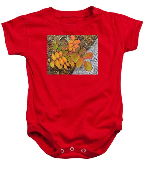 New And Old Life Cycles Baby Onesie
