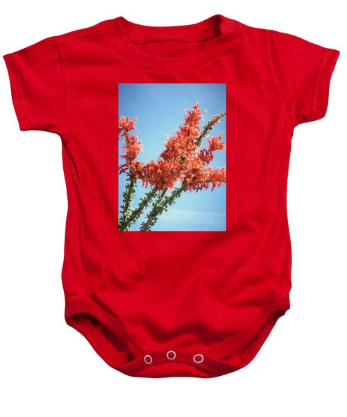 Ocotillo In Bloom Baby Onesie