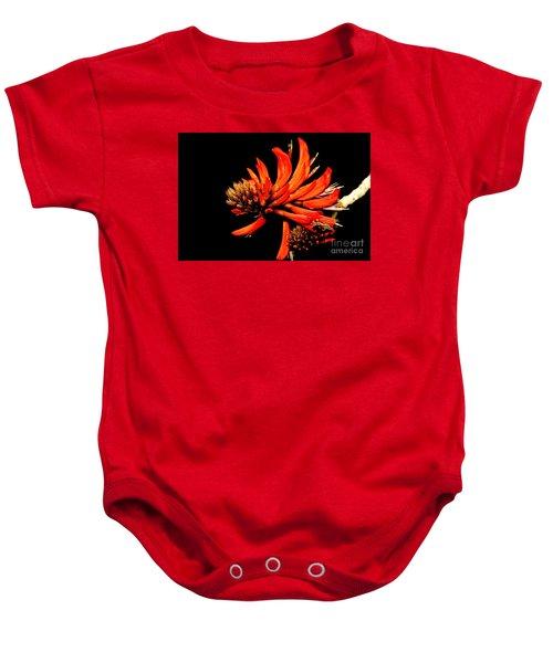 Baby Onesie featuring the photograph Orange Clover II by Stephen Mitchell