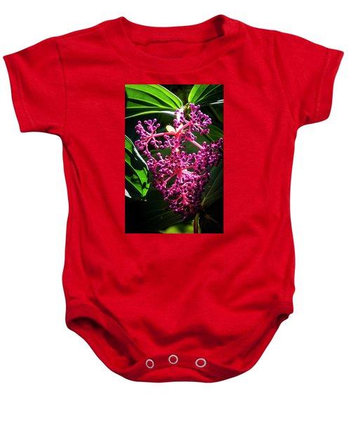 Purple Plant Baby Onesie