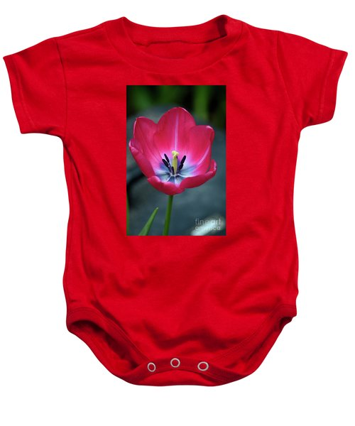 Red Tulip Blossom With Stamen And Petals And Pistil Baby Onesie