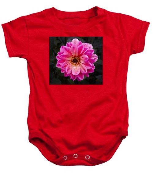 Reddish Dahlia Baby Onesie