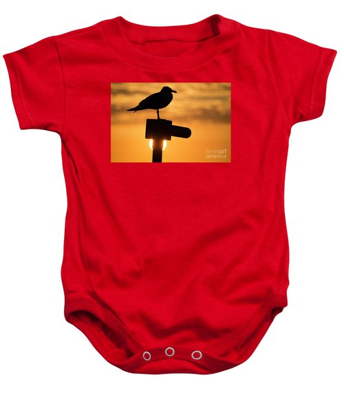 Seagull At Sunset Baby Onesie
