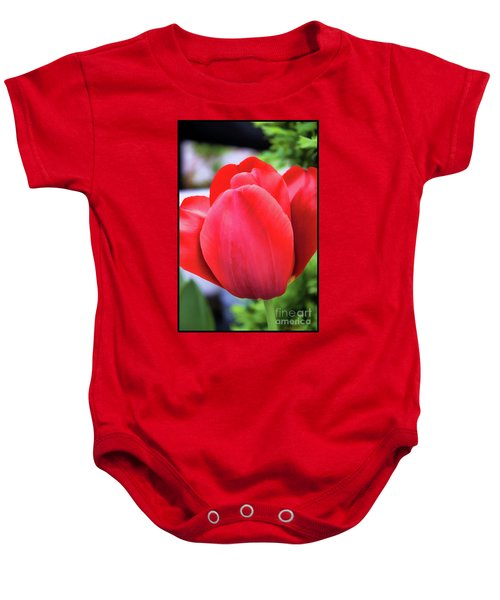 The Tulip Beauty Baby Onesie