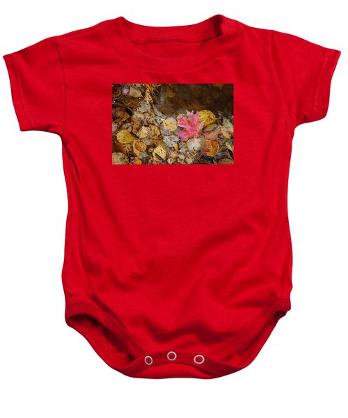 The Last Leaf Baby Onesie