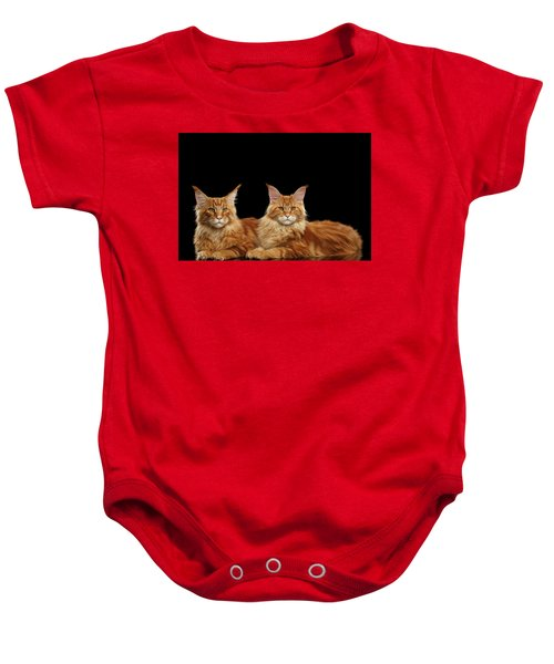 Two Ginger Maine Coon Cat On Black Baby Onesie