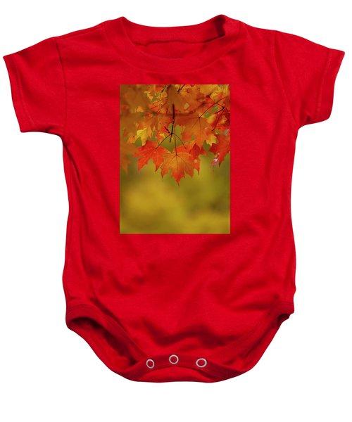 Fall Leaves Baby Onesie
