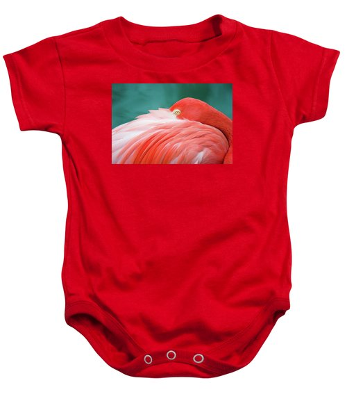 Flamingo At Rest Baby Onesie