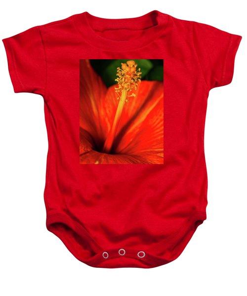 Into A Flower Baby Onesie