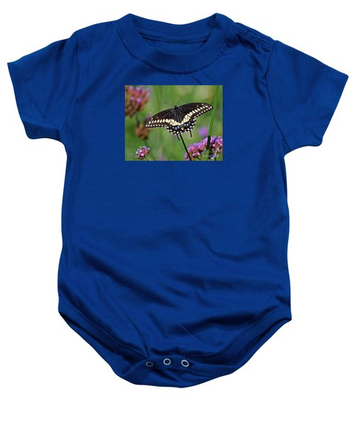 Black Swallowtail Butterfly  Baby Onesie