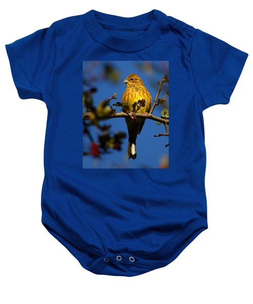 Yellowhammer Baby Onesie