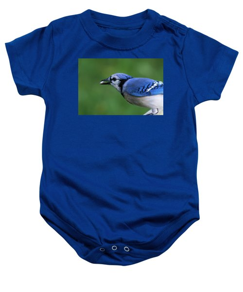 Blue Jay With Seed Baby Onesie