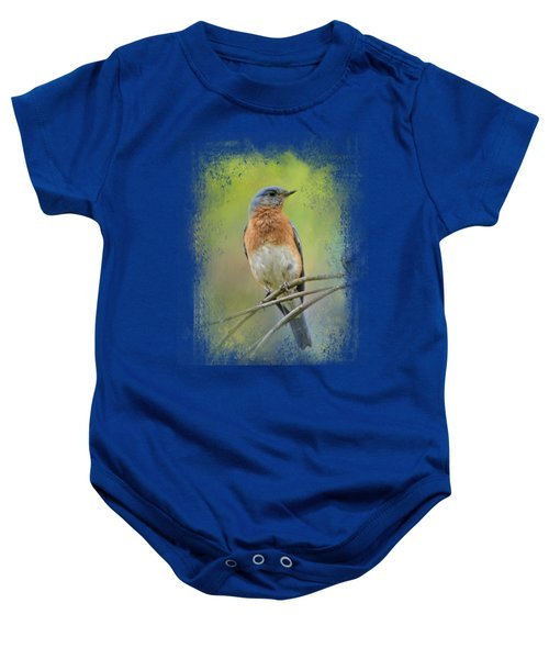 Bluebird On A Spring Day Baby Onesie by Jai Johnson