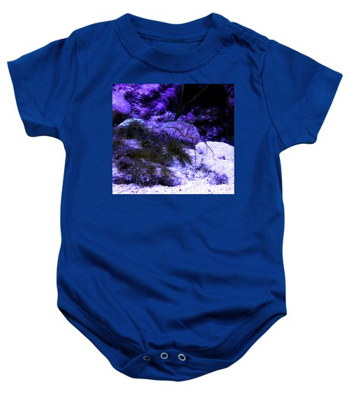 Baby Onesie featuring the photograph Sea Spider by Francesca Mackenney