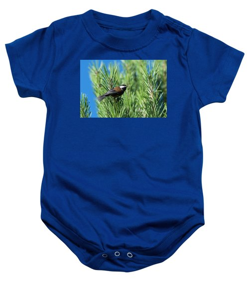 Chestnut-backed Chickadee Baby Onesie