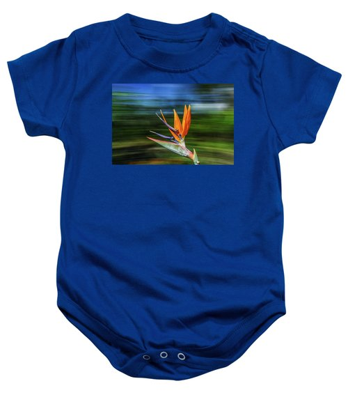 Flying Bird Of Paradise Baby Onesie