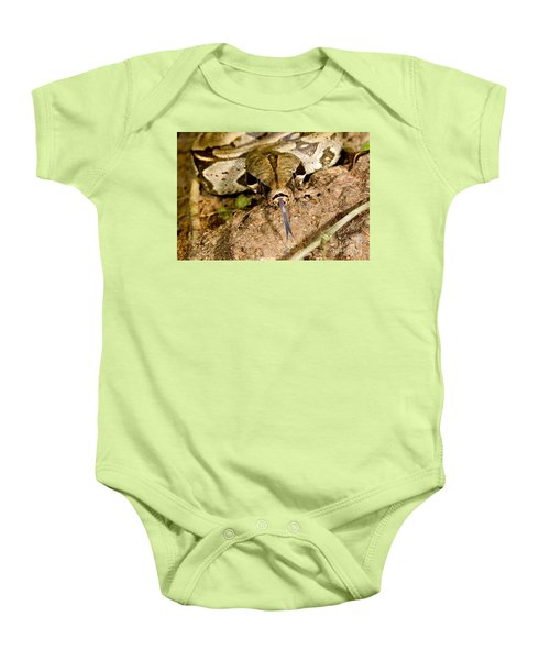 Boa Constrictor Baby Onesie by Gregory G. Dimijian, M.D.