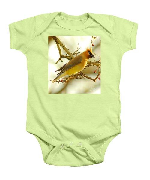 Cedar Waxwing Baby Onesie by Robert Frederick