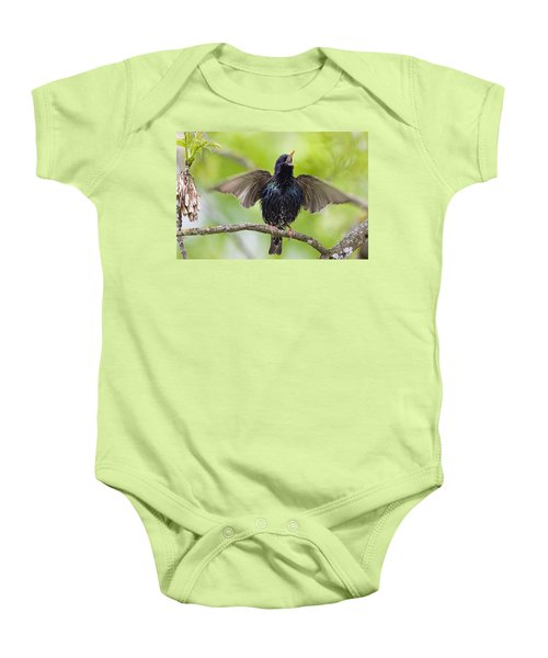 Common Starling Singing Bavaria Baby Onesie by Konrad Wothe